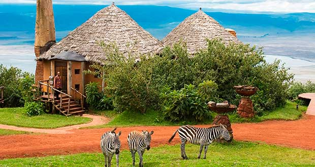 Горящие туры из Москвы, Спб и Регионов 2021 ✈ Turs.sale - africa tanzania zanzibar znz hotel animal piratesru turs sale 1