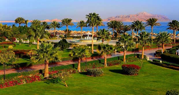 Горящие туры из Москвы, Спб и Регионов 2021 ✈ Turs.sale - arab egypt ssh sharm sheikh hotel sea 1